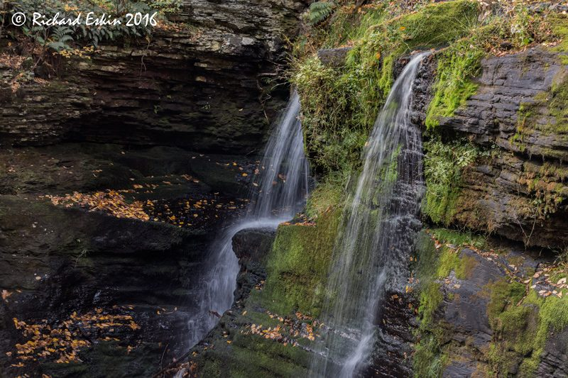 At Child's Fall Park in the Delaware River Water Gap, PA, taken at a workshop with John Barclay.