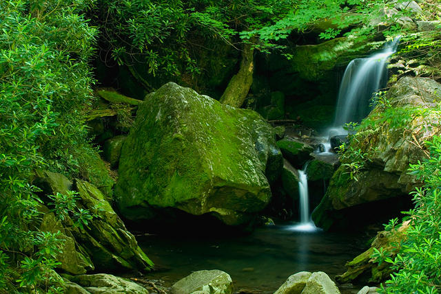Grotto Falls in Smoky Mountain National Park